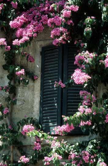 zamknięte okno symbolizuje...